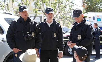 NCIS Cast: Signed for Season 12!