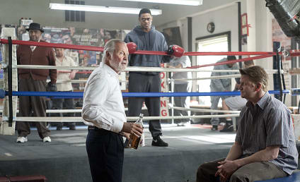 Ray Donovan Review: It's Gonna Be A Great Year