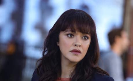Detective Baez - Blue Bloods Season 9 Episode 6