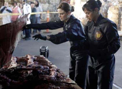 Watch Bones Season 4 Episode 18 Online