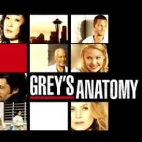 Greys anatomy 1 fan